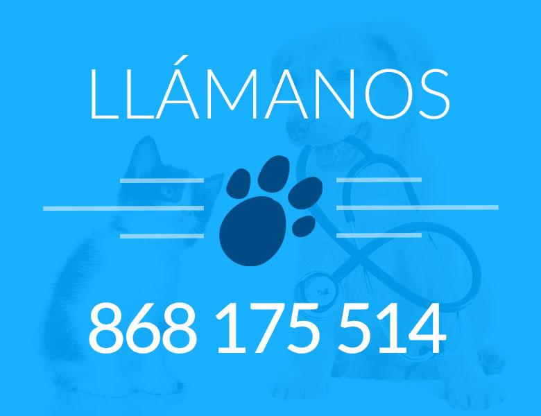 telefono-veterinaria-lorca